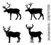 deer collection | Shutterstock .eps vector #238797550