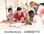 group of students studying... | Shutterstock . vector #238808773