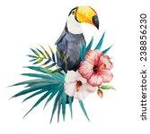toucan  hibiscus  watercolor | Shutterstock .eps vector #238856230
