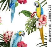 parrot  flowers  pattern | Shutterstock .eps vector #238856233