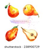 watercolor illustration. ripe... | Shutterstock . vector #238900729