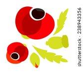 red poppy icons set | Shutterstock .eps vector #238943356