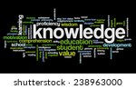 conceptual image of tag cloud... | Shutterstock .eps vector #238963000