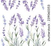 decorative watercolor... | Shutterstock .eps vector #239060353