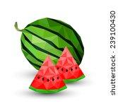 watermelon healthy fruit... | Shutterstock .eps vector #239100430