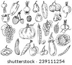 drawing on a white background... | Shutterstock .eps vector #239111254