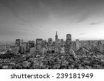 beautiful view of  business... | Shutterstock . vector #239181949