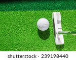 golf club and golf ball on... | Shutterstock . vector #239198440