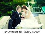 wedding couple | Shutterstock . vector #239246404