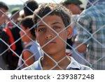turkish syrian border  june 18  ...   Shutterstock . vector #239387248