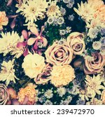 Stock photo vintage old flower backgrounds vintage effect style pictures 239472970