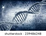 dna molecules on the natural... | Shutterstock . vector #239486248