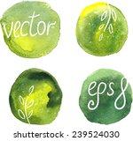 vector watercolor blots ... | Shutterstock .eps vector #239524030