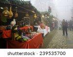 govone  italy cuneo   december... | Shutterstock . vector #239535700