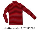 striped sweater isolated on... | Shutterstock . vector #239536720