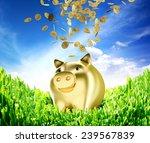 Piggy Bank Concept  Of Saving...