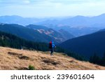 carpathian mountains | Shutterstock . vector #239601604