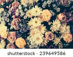 Stock photo vintage old flower backgrounds vintage effect style pictures 239649586