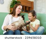 Stock photo happy woman and daughter sitting with cat at home 239658310