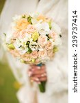 the bride holds wedding bouquet   Shutterstock . vector #239737414
