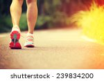 young fitness woman legs... | Shutterstock . vector #239834200