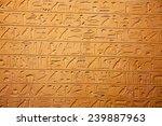 egyptian hieroglyphs on the wall | Shutterstock . vector #239887963