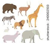 wildlife animal vector... | Shutterstock .eps vector #240002503