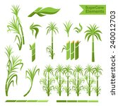 sugar cane decoration borders ... | Shutterstock .eps vector #240012703