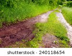 dirt road on a field in a sunny ...
