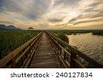 evening on a wooden walkway in...   Shutterstock . vector #240127834