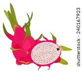 isolated dragon fruit  exotic... | Shutterstock .eps vector #240167923
