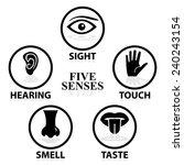 five senses related vector icon ...   Shutterstock .eps vector #240243154