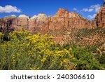 Yellow Wildflowers And...