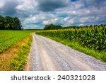Corn Fields Along A Dirt Road...