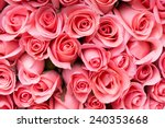 Stock photo pink rose flower bouquet background 240353668