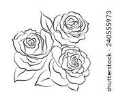 black and white roses design | Shutterstock .eps vector #240555973