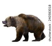 Extinct Cave Bear Illustration