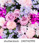 Stock photo colorful nature flower backgrounds 240742990