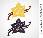vanilla flower and vanilla pods ... | Shutterstock .eps vector #240866014