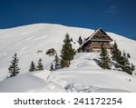 hiking in the winter hills and... | Shutterstock . vector #241172254