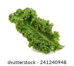 kale | Shutterstock . vector #241240948