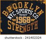 brooklyn sports graphic design | Shutterstock .eps vector #241402324