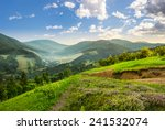 composite mountain landscape. flowers on hillside meadow near village in foggy mountain  forest at sunrise - stock photo