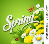 fresh spring background with... | Shutterstock .eps vector #241542994