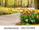 spring garden | Shutterstock . vector #241727494