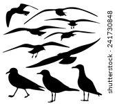 set of sea gull silhouette ... | Shutterstock .eps vector #241730848