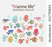 vector marine life hand drawn... | Shutterstock .eps vector #241790824