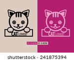 face of cat vector with massage ... | Shutterstock .eps vector #241875394