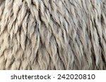 Dirty Sheepskin Use As...