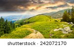 composite mountain landscape. pine trees and boulders near meadow path on hillside in morning light with rainbow - stock photo